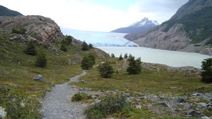 glacier-grey-sighting