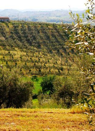 Abruzzo1