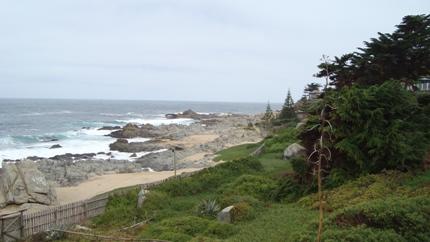 Beach at Isla Negra