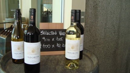 Wines at Vina Indomita