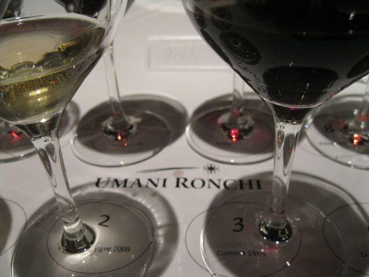 Umani Ronchi Tasting